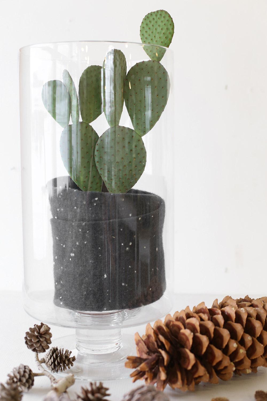 isänpäiväkukkia järvenpään kukkatalosta. isäkin tykkää kukista, vaikka kiva kaktus kauniissa ruukussa olis hieno isänpäivälahja.