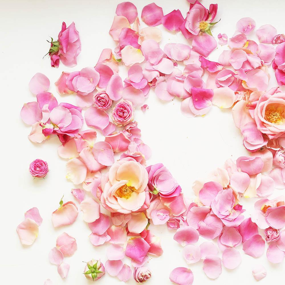 Ruusun treälehditä on tehty sydän ystävänpäivän kunniaksi. Kukkia ystävänpäivään.