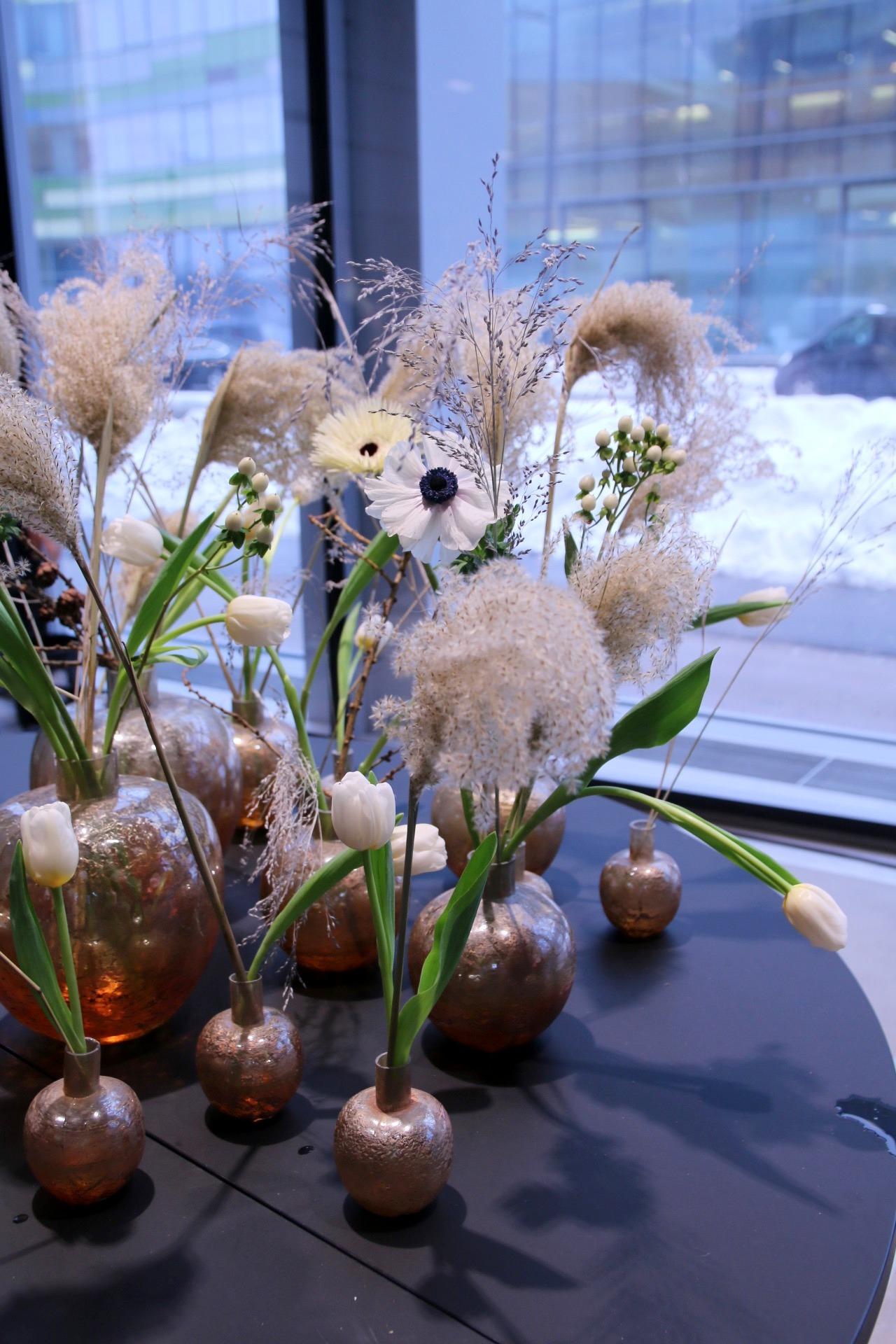 Erikokoisista maljakoista on tehty ryhmä. Valkoiset tulppaanit on aseteltu anemonen, kuismanmarjan ja heinien kanssa kokonaisuudeksi. Leikkotulppaanit saavat venyä pitkiksikin.