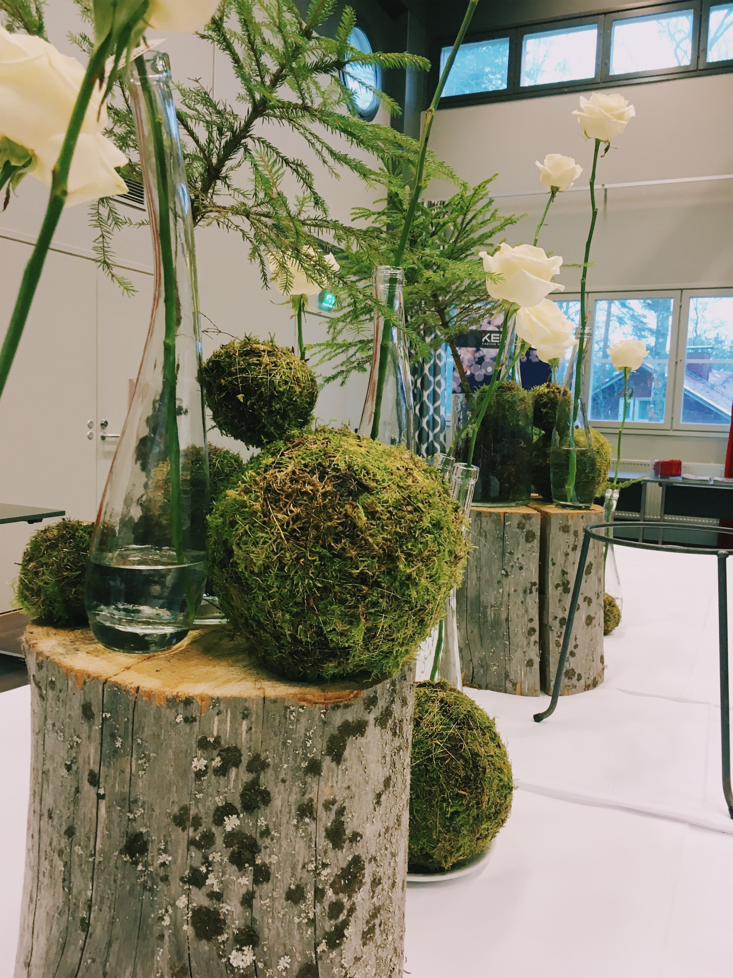 buffetpöydän koristelu on kaunis ja metsäinen, sammalapalloineen ja metsän kuusineen
