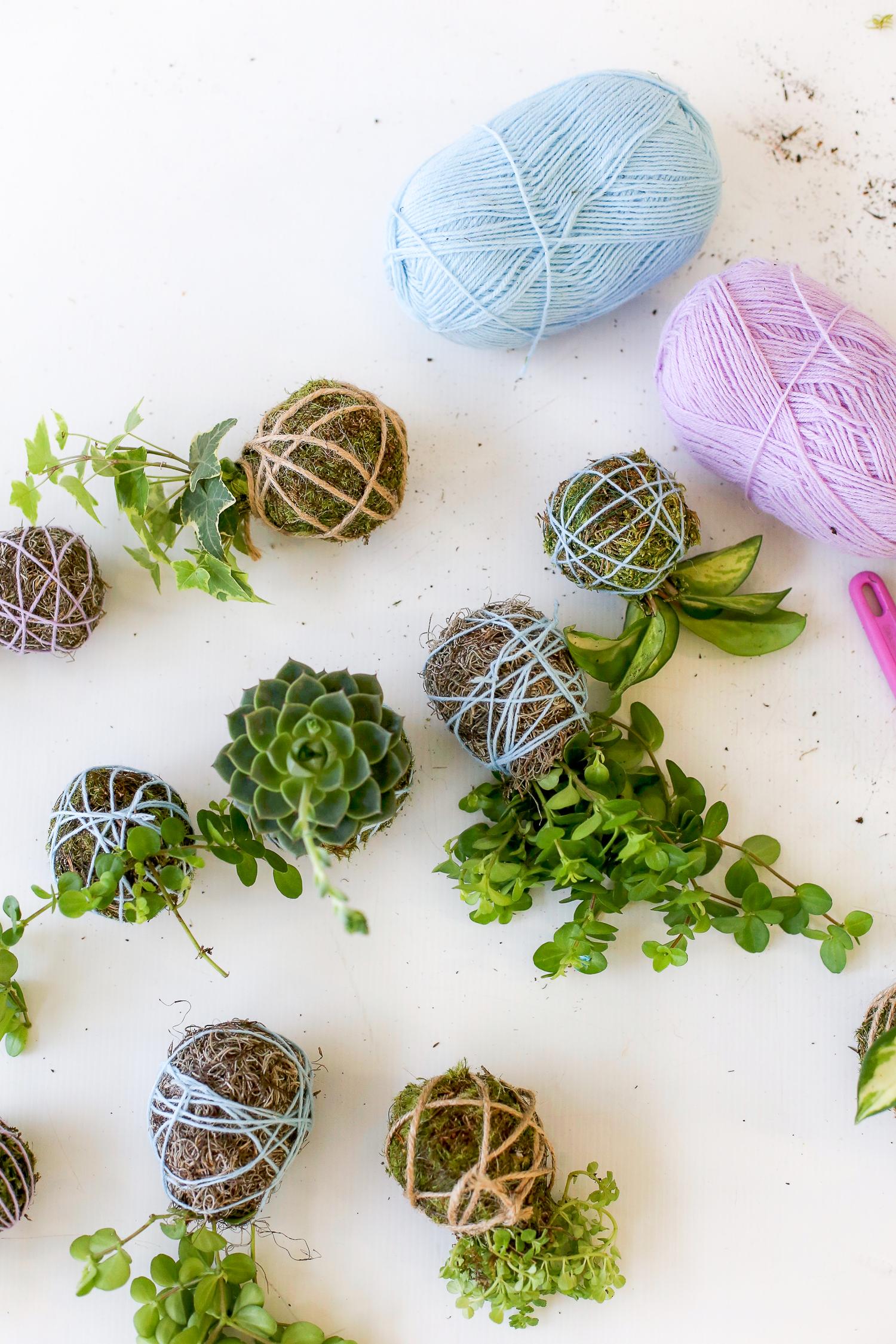 Kokedamaplaaot on tehty viherkasveista sammaleesta ja narusta. Kukkasidontakursseillamme eli kukkakoulussamme voit opetella tekemään näitä ihania sisustuksellisia kukkapalloja.