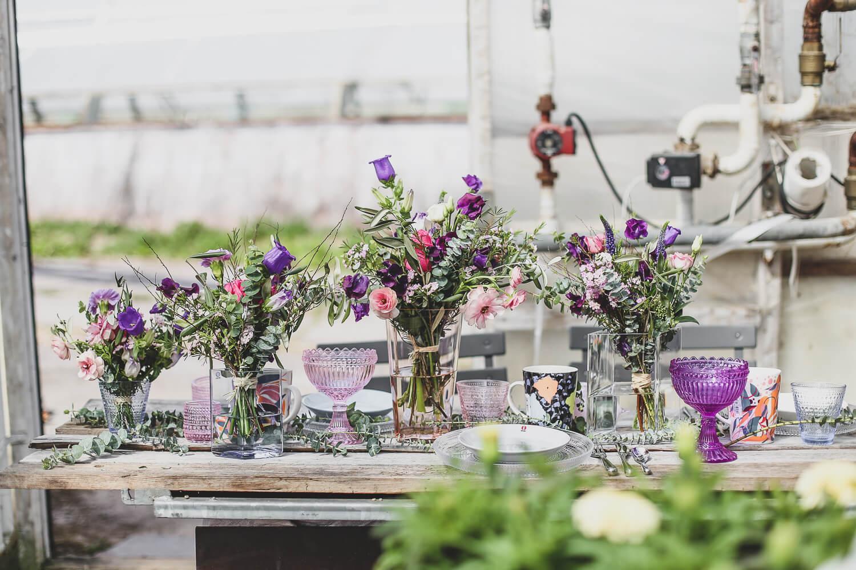 Kasvihuoneen pöydälle on katettu kahvipöytä Iittalan astioilla ja liloilla kukilla koristellen.