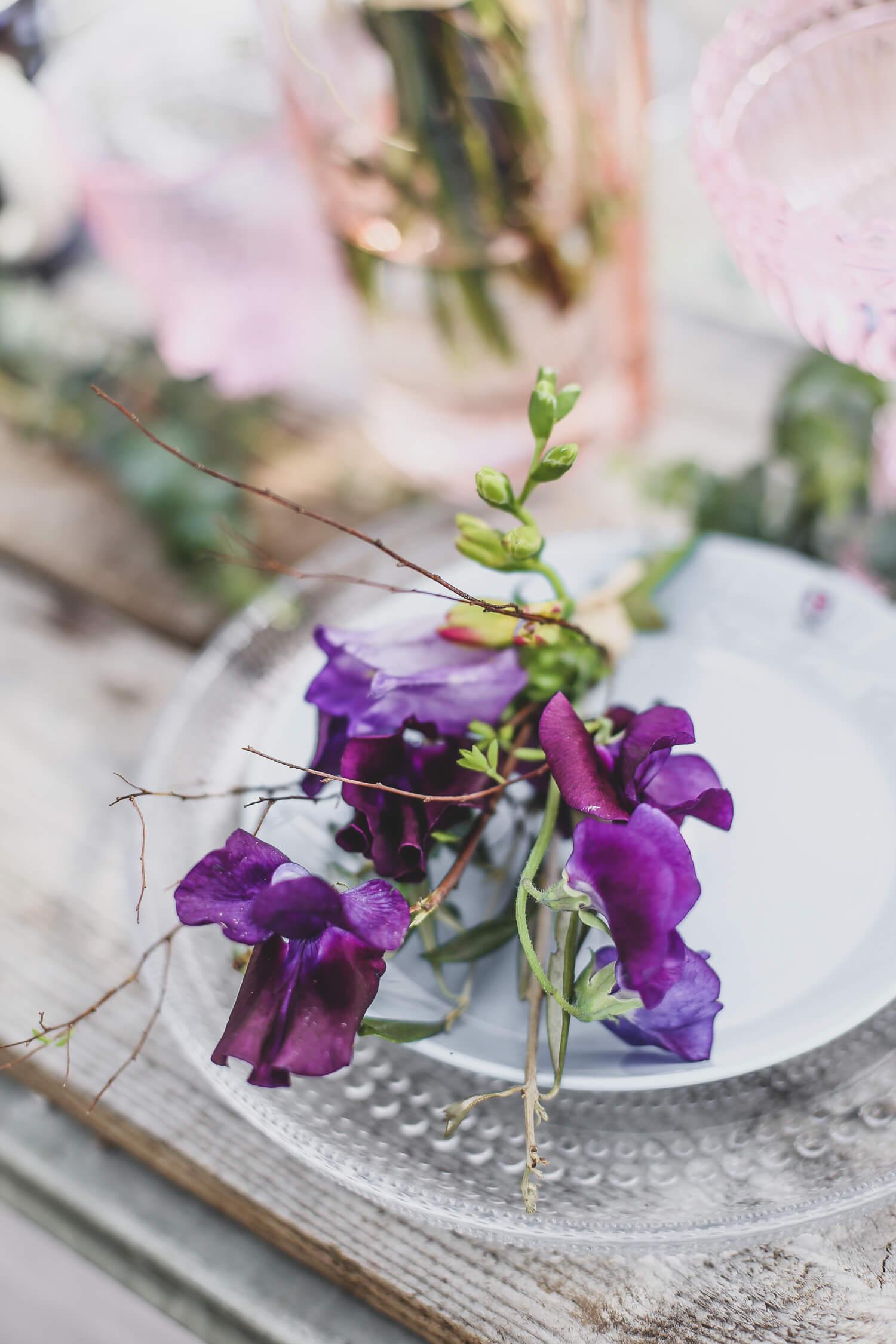 Tumma lila tuoksuherne, freesia ja risumainen angervon oksa ovat minikimpun aineksia.