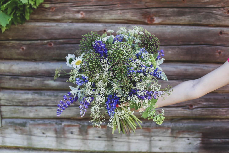 Juhannuksen kukkkakimppu sidotaan sinisistä ja valkoisista kesäkukista